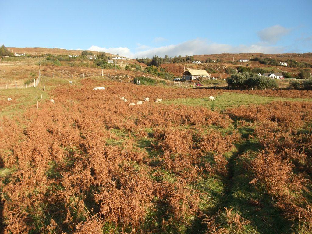 11 Fasach, Glendale, Isle Of Skye, IV55 8WP